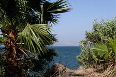 Sea of Galilee Stock Photos
