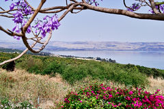 The Sea of Galilee and Capernaum. Viewed from the Church Of The Beatitudes, Israel Stock Image