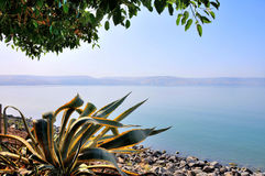 Sea of Galilee Royalty Free Stock Photos