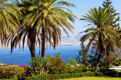 Sea of galilee, landscape. Sea of Galilee, Mount of Beatitudes, gardens Stock Images
