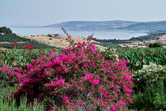 The Sea of Galilee Royalty Free Stock Images