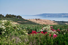 Sea of Galilee. Looking over the south end of the Sea of Galilee. May, 2010 Royalty Free Stock Image