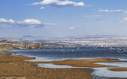 Sea of Galilee with seagulls and tourist ships Royalty Free Stock Photo