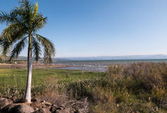 Sea of Galilee Shoreline. A view toward the distant Golan Heights from the shoreline of the Sea of Galilee in Israel also known as Kinneret, Lake of Gennesaret Stock Photo