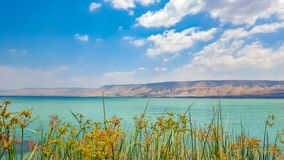 Sea of Galilee view at noon stock images
