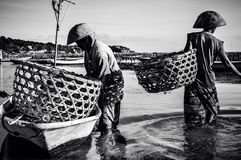 The sea gives. Sea weed collectors in nusa lebongan indonesia Stock Photo