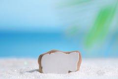 Sea glass seaglass on glitter sand with ocean Stock Photos