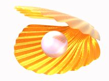Sea golden shell with pearlescent pearl inside royalty free illustration