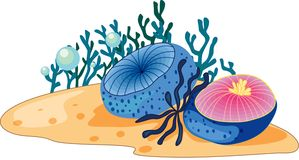 Sea grass. Illustration of sea grass under water stock illustration