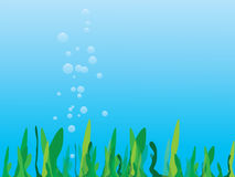 Sea grass. Vector illustration of sea grass royalty free illustration