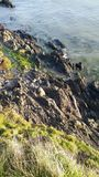 Sea and rocky coast. Sea and rock at coast ireland dublin Stock Images
