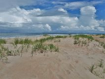 Atlantic Beach Dunes. Sea grass and foliage in the dunes under storm clouds in Atlantic Beach, North Carolina Stock Photos