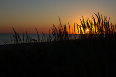 Sea and grass silhouettes in sunset Ukraine, steppe region, Kinburn spit Royalty Free Stock Photo