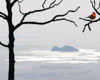 Sea gray landscape Royalty Free Stock Photos