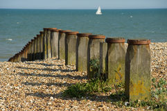 Sea Groynes. At Eastbourne protecting the beach Stock Photography
