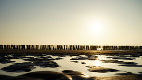 Sea groynes at sunset 3 Royalty Free Stock Photos