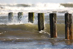 Sea groynes. Waves crashing on sea groynes in the sunlight Stock Photos
