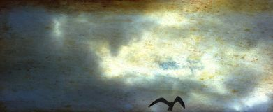 Sea gull in flight against a dark, foreboding sky, beware. Sinister black seagull soaring high, wings spread, in front of a frightening sky full of menacing royalty free stock images