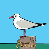 Sea gull sitting on the pier Stock Images