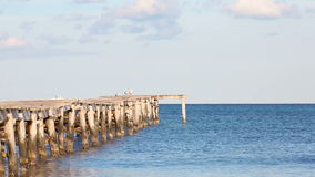 Sea gulls on the jetty in the seascape stock video footage