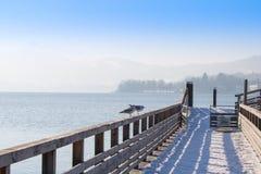Sea gulls at lake Traunsee in Gmunden, Salzkammergut, Austria,eu Royalty Free Stock Images