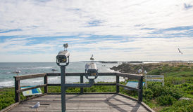 Sea Gulls: Penguin Island Lookout. Sea Gulls at a Penguin Island lookout with an elevated view of the Indian Ocean seascape and coastal dunes under an overcast Stock Photos