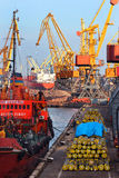 Sea harbor cranes at cargo port load bulk solids and pipes Royalty Free Stock Image