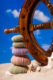Sea Hedgehog shells on sand and blue sky Background Stock Image