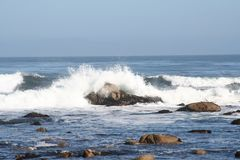 Sea from Highway No 1 Royalty Free Stock Image