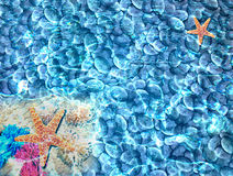 Sea and holiday. This is design for holiday and print Stock Image