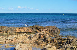Sea Horizon Viewed From A Rocky Shoreline Royalty Free Stock Photography
