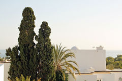 Sea, horizon, palms and white buildings. Beautiful view of sea, horizon, palms and white buildings Royalty Free Stock Photography
