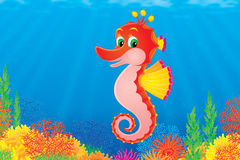 Sea horse. Funny sea horse is swimming against the colorful coral reef. This high resolution image was drawn in Photo Shop. Please view my portfolio to search Royalty Free Stock Photography