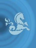 Sea Horse Stock Photography