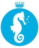 Sea horse Royalty Free Stock Photography