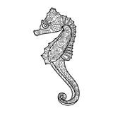 Sea horse coloring book for adults vector Stock Photography
