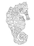 Sea horse coloring vector for adults Royalty Free Stock Photo