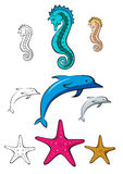 Sea horse, dolphin and star fish Stock Images