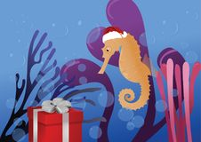 Sea horse happy new year. Sea horse in a Santa hat on a background of seaweed looks on the holiday box Royalty Free Stock Photo