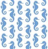 Sea Horse. Pattern. Vector illustration (EPS 10 Royalty Free Stock Photography