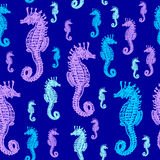 Sea Horses colourful seamless  pattern. Realistic engraved style of Sea Horses on blue background Royalty Free Stock Photos