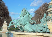 The sea horses of the fountain Carpeaux Paris France. Stock Images