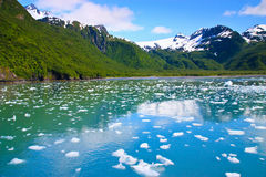 Sea of ice Stock Image