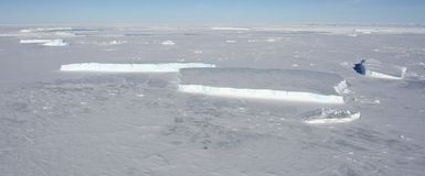 Sea ice on Antarctica Stock Image