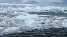 Sea of ice, Avers Island, Antarctica stock video footage