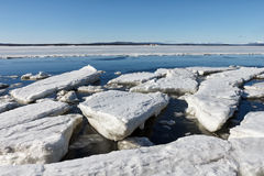 Sea ice is destroyed in the spring. White sea, Russia Royalty Free Stock Image
