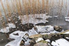 Sea with ice flakes Stock Photo
