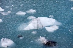 Sea ice. Float on the water Royalty Free Stock Photo