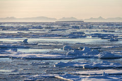 Sea Ice - Greenland Stock Photography
