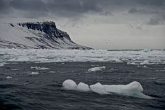 Sea of ice with headland in distance Royalty Free Stock Photography